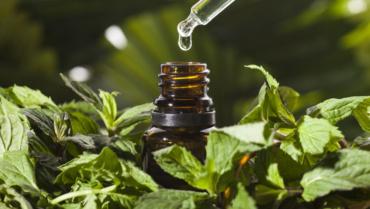 Сила натуральної олії